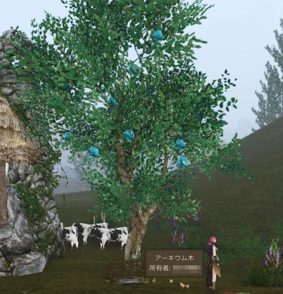 アーキウムの木