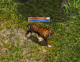タイガー変身