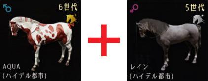 6世代馬×5世代馬